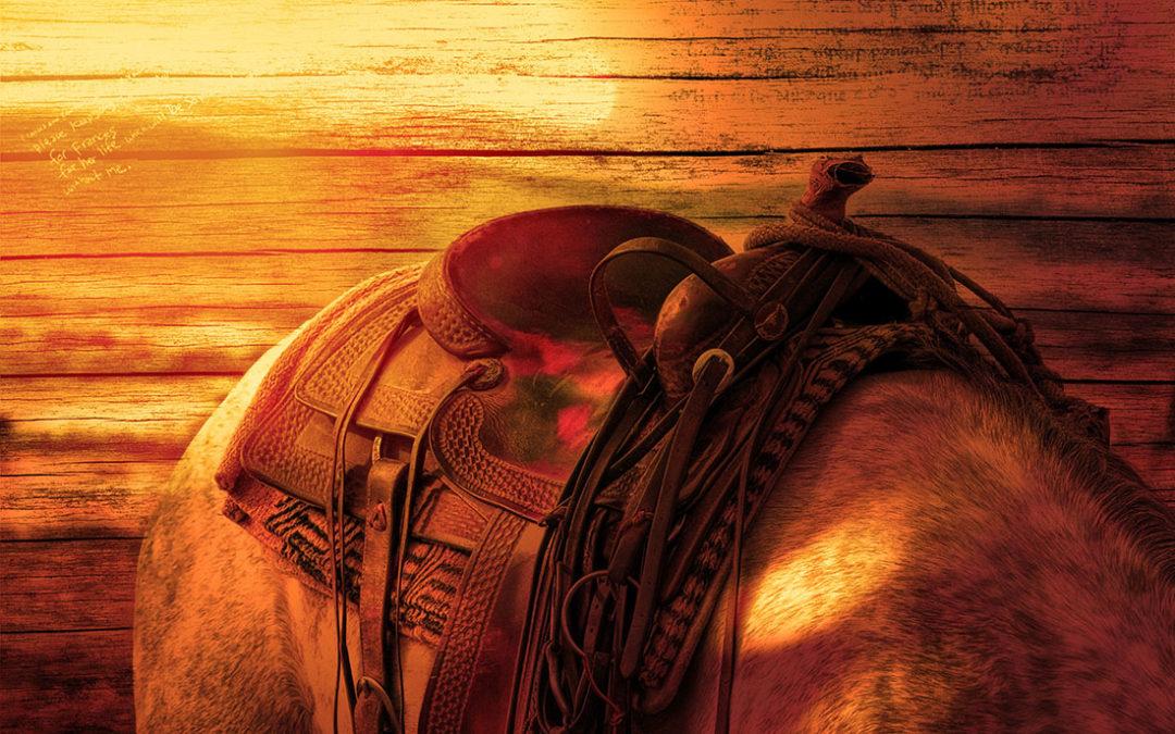 Ze sedlovny v Mokrovratech odcizil zloděj koňská sedla za sto tisíc korun