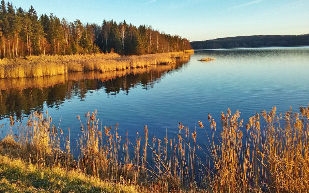 Rozhovor s Bohumilem Fišerem: Jak přehlasované veto zákona o národních parcích ovlivní CHKO Brdy?