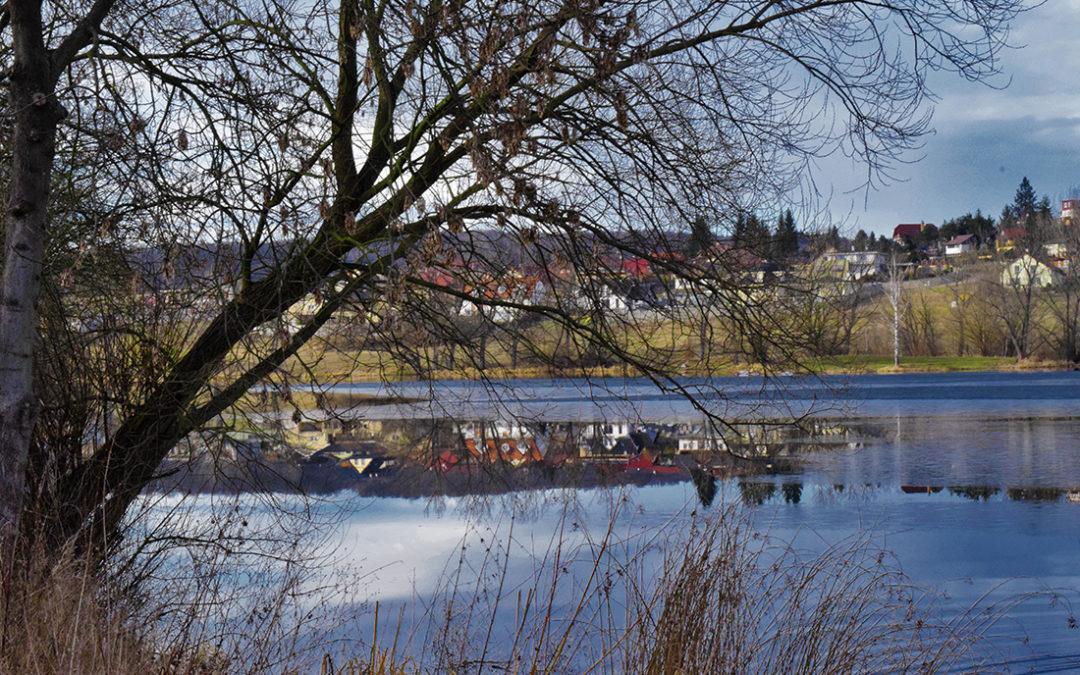 Suché větve na hrázi rybníka Papeže mohou ohrozit chodce