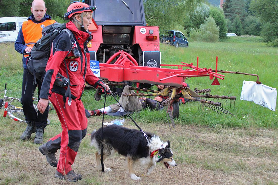 Během akce pomáhali i psi  I  foto: Šárka Spáčilová